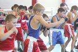 Фитнес центр Спортивная секция по боксу, фото №1